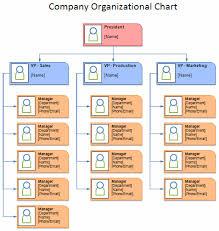 Corporate Organization Chart Template Templates Resume