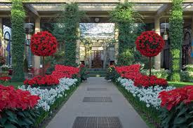 longwood gardens opens a longwood its whimsical holiday show with half a million ling lights treeore