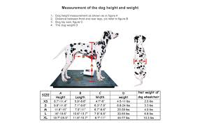 Sylphid Adjustable Dog Wheelchair 5 Sizes For Hind Legs Rehabilitation For Dogs Weight 4 5 To 77 Lbs Wheelchair For Back Legs