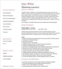 Example Executive Resume Enchanting Executive Resume Example Free Professional Resume Templates