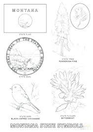 State Of Texas Symbols Coloring Pages Coloring Pages Coloring Pages
