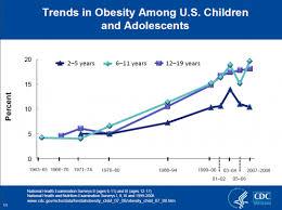 essay obesity america argumentative essay obesity america