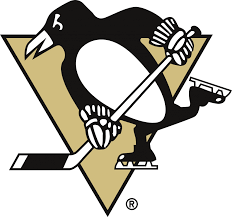Pittsburgh Penguins Bedroom Decor Nhl Pittsburgh Penguins Comforter Pillowcase Hockey Bedding Queen