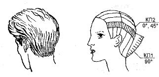Дипломная работа Современные стрижки мужские и женские волос  Дипломная работа Современные стрижки мужские и женские волос Виды и фасоны стрижек
