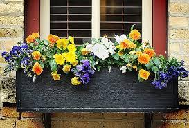 18 896 просмотров • 11 июл. Choose Flowers For Window Boxes