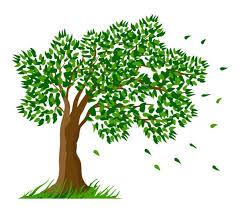Dogwood Tree Cliparts #2821166