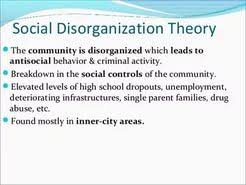 social disorganization theory essay the effects of social  essay about social disorganization theory essay about social disorganization theory