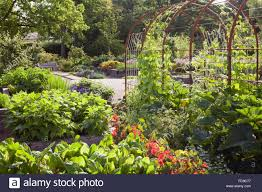 The Kitchen Garden Metal Archway Climbing Frame Among Raised Beds The Kitchen Garden