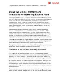 11 Product Launch Marketing Plan Examples Word Pdf