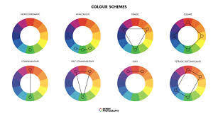 Color Wheel Chart Combinations How To Use Complementary Colors In Photography 25 Examples