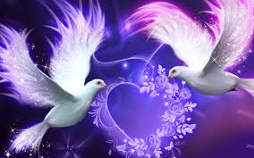 peagon love birds wallpaper