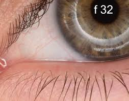 Image result for What's the sharpest aperture on a lens