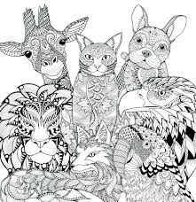 Zoo Colouring Pages To Print Coloring Pictures Animals Page On Media