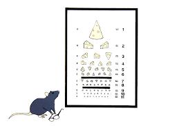 Rat Chart Rats Jessica Marie Gross