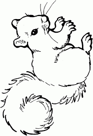 Kleurplaat Eekhoorn Eekhoorn Janny Malvorlagen Tiere Inside