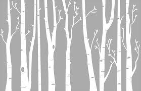 birch tree wall trend birch tree wall