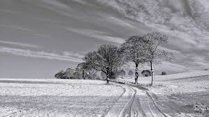 winter mac backgrounds black and white winter desktop pc and mac wallpaper black