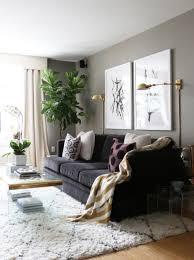 apartment decor ideas. Apartment Living Room Decor Ideas Magnificent Inspiration
