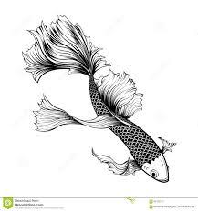рыбы Koi и татуировка хризантемы вручную рисуя иллюстрация вектора