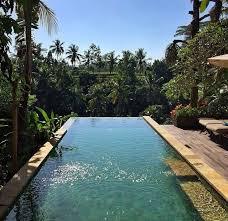 summer pool tumblr. Jungle Pool Summer Tumblr