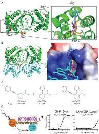Fragment Based Drug Design Ppt Structure Based Design Of Small Molecule Inhibitors Of Ebna1