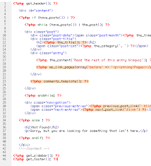Building Custom WordPress Theme - Web Designer Wall