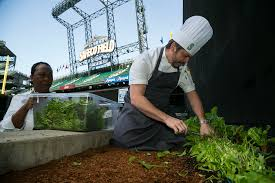 Executive Chef Interview Questions From Center Field To Table Safecos Urban Garden