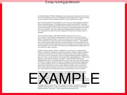 essay nursing profession college paper academic service essay nursing profession the question of whether nursing is a profession has been an ongoing