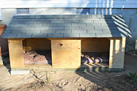 full size of dog house homemade dog house diy insulated dog house dog house plans