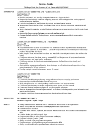 Art Director Resume Sample Assistant Art Director Resume Samples Velvet Jobs 2