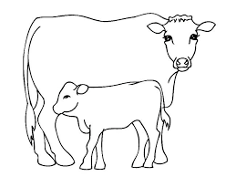 Cow Template Cow Outline