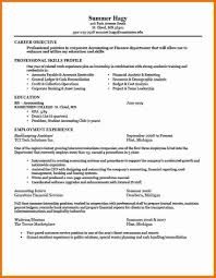 Examples Of Resumes Mesmerizing Job Application Resume Sample