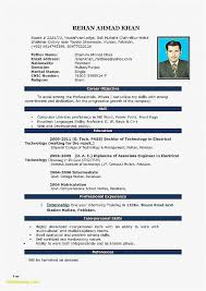 19 Downloadable Resume Templates For Microsoft Word Free Best