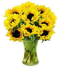 simply sunflowers farm fresh