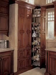 Kitchen Cabinets Corner Pantry Kitchen Corner Pantry Ideas Home Design Ideas