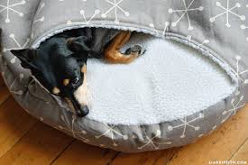 How to Make a DIY Burrow Dog Bed