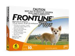 frontline for puppies. Donate To Hope Dog Rescue \u2013 Frontline For Puppies D