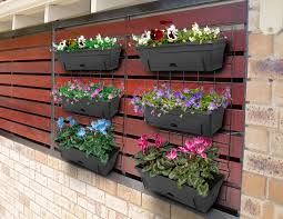 colour a wall of flowers will brighten any outdoor space picture bunnings