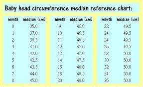 Newborn Baby Head Circumference Chart Details About New Baby Girl Crochet Knit Flower Infant Knit