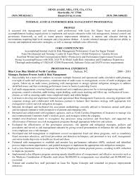 Will You Write My Essay For Me Quickly 6 Sigma Black Belt Resume