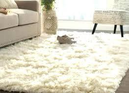 white fuzzy rug pk8info