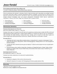 Resume Format Of Accounts Executive Best Of Download Advertising