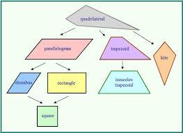 Venn Diagram Of Quadrilaterals Quadrilaterals Class Blog Math With Maj Watson