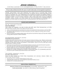 Channel Sales Resume Example Outside Sales Rep Resume Fee 4013