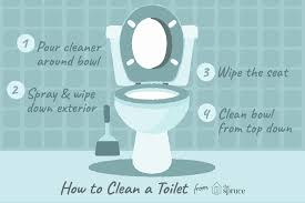 Bathroom Cleaning Flow Chart How To Properly Clean A Toilet