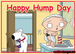 Funny Hump Day Quotes Beauteous Family Guy Wednesday Hump Day Quote Pictures Photos And Images For