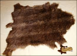 weird animal skin rugs grizzly bear for any room world