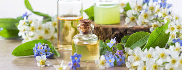 Top 10 Essential Oils and Its Amazing Uses - HealthPost NZ
