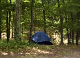 a tent at a campsite in one of the huronmanistee national forest campgrounds people camping woods o80 camping