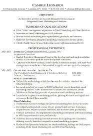 Summary Resume Template Simple Professional Summary Examples Practicable Portray Resume Template